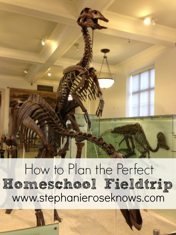 How to Plan the Perfect Homeschool Field Trip