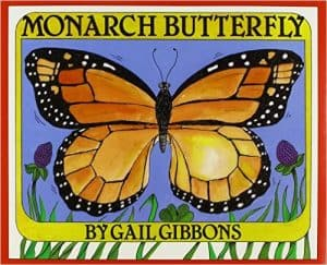 monarch buttefly