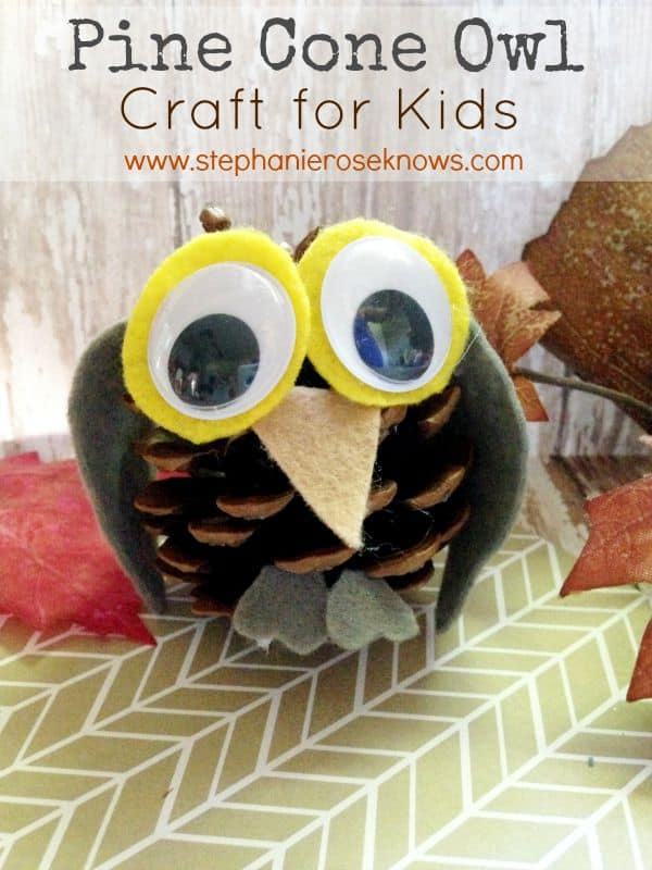 Owl pine cone craft