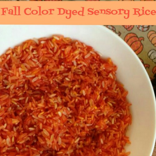 Fall Color Dyed Sensory Rice