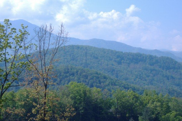 10 Reasons the Smokies Make the Perfect Vacation