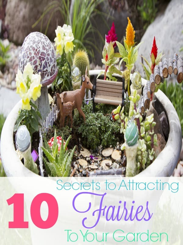 10 Secrets to Attracting Fairies to Your Garden | Simple in
