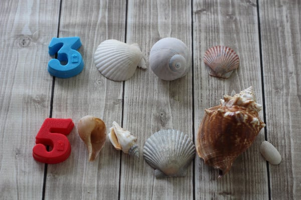 shell count
