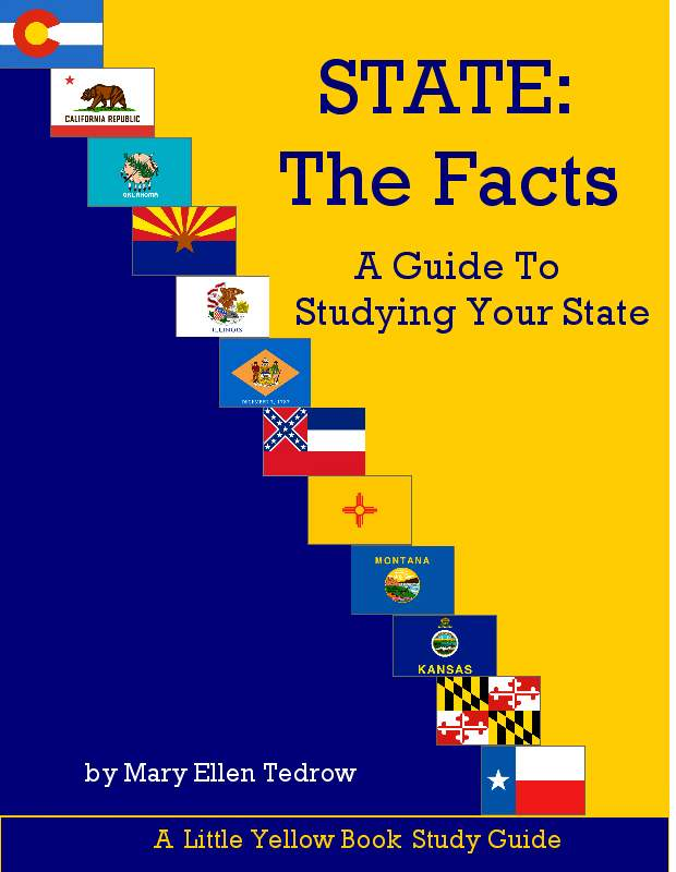 State history curriculum
