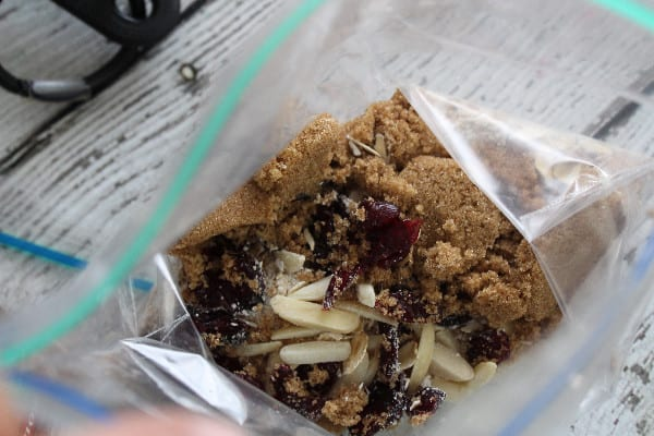 homemade instant oatmeal packets cranberry