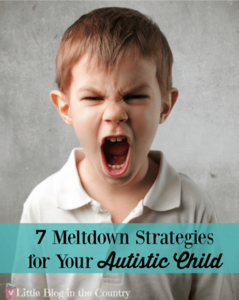 Meltdown Strategies for Your Autistic Chikd
