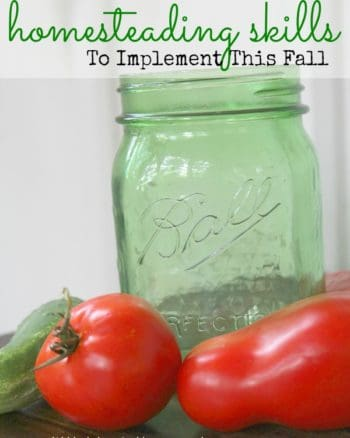 7 Homesteading Skills to Master This Fall