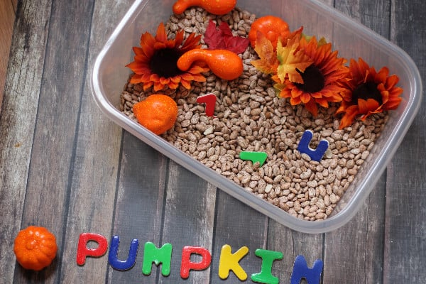 simple-fall-sensory-bin