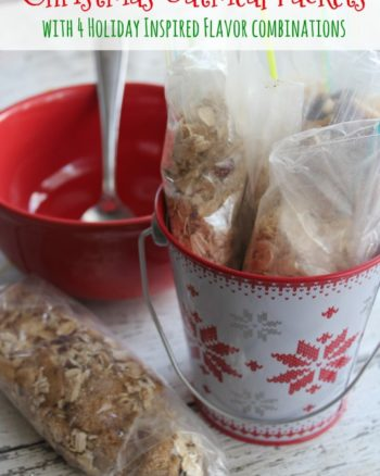Homemade Christmas Instant Oatmeal Packets