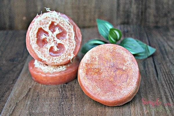 Pumpkin Spice Loofah Soap