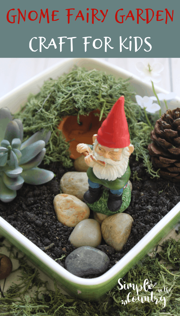 Gnome Fairy Garden in a flower pot