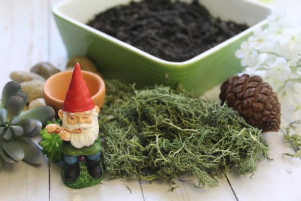 Supplies to create a gnome Fairy garden