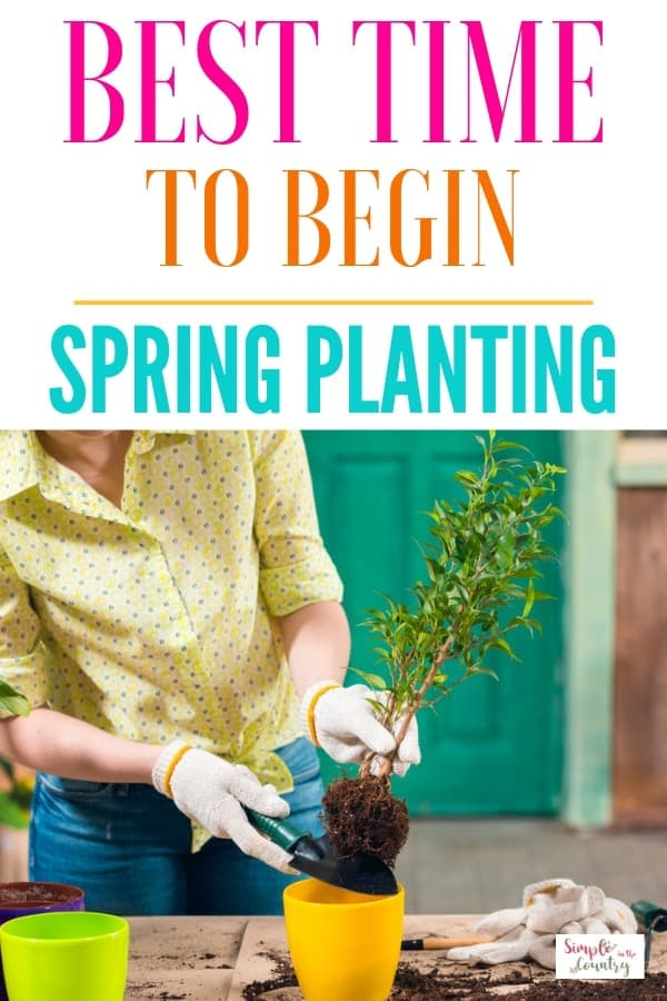 Best Time to Begin Spring Planting