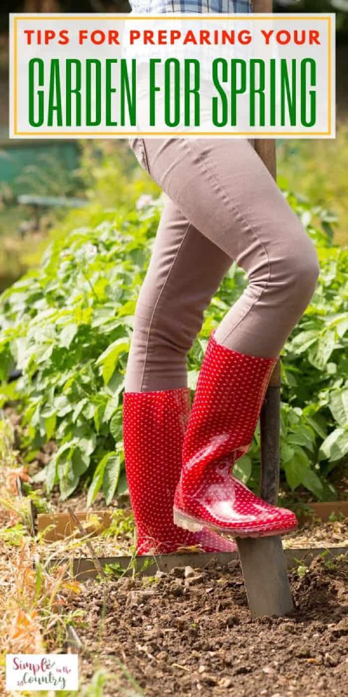 Tips for preparing your garden in spring