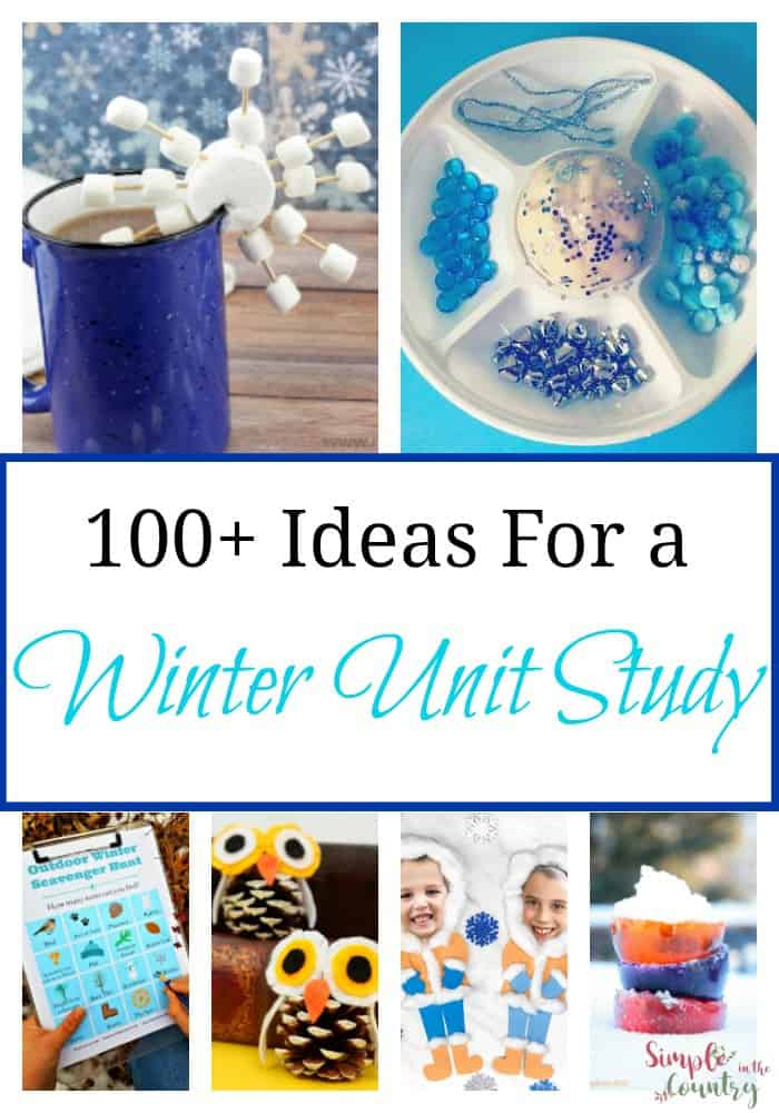 Winter Unit Study
